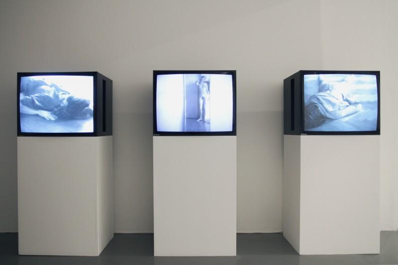 THE BLOCK – Juan Downey, Lili Dujourie, Sidsel Meineche Hansen, Matts Leiderstam, Chris Marker: Late Barbarians at Gasworks. 2014/01/24 – 2014/03/09