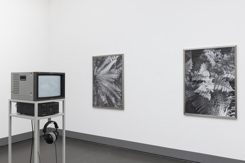 THE BLOCK – Charlotte Prodger at Kunstverein Düsseldorf. 2016/08/06 – 2016/10/16